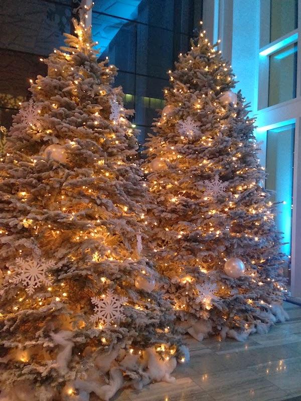 LA Mag Christmas Trees