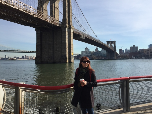Gidget and the Brooklyn Brodge