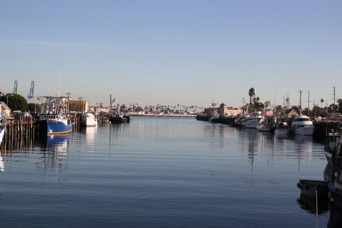 LA Local : San Pedro